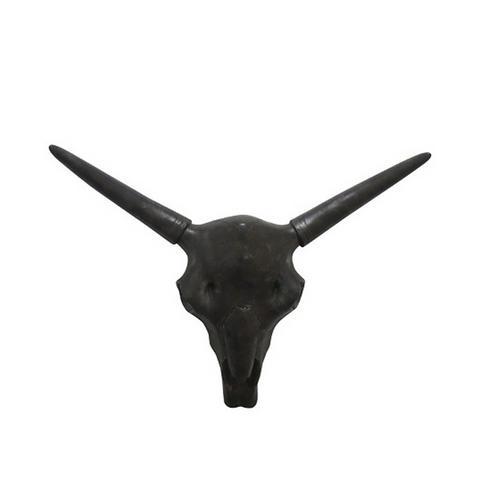 Steer Head Skull