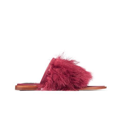 Jack Feather-Embellished Leather Slides