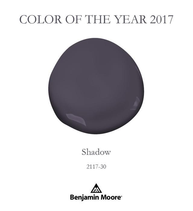Benjamin Moore Shadow 2117-30 Pint