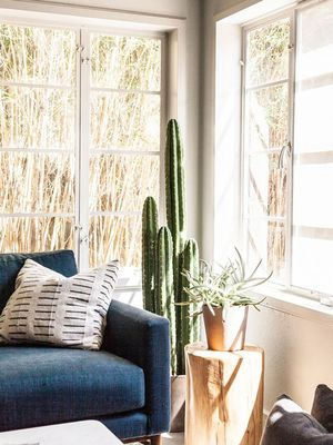 Inside a Hip Austin Apartment With Moody Vibes