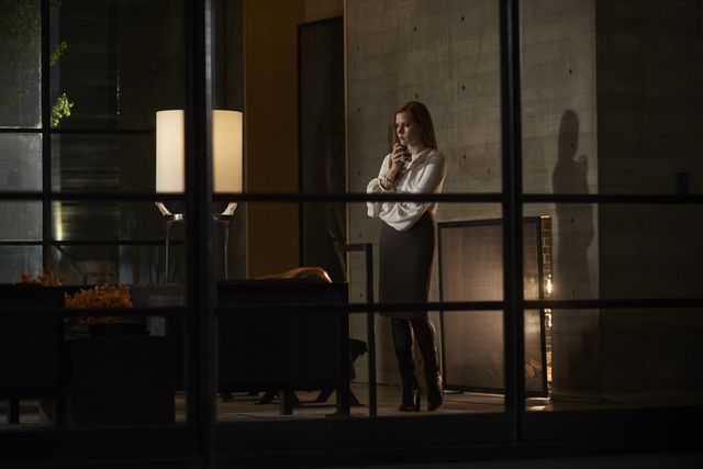 WWW: Did you just go about using all Tom Ford clothing? AP: Because it was a contemporary film and because it's a milieu in which Amy Adams's character, Susan, works with the cultural...