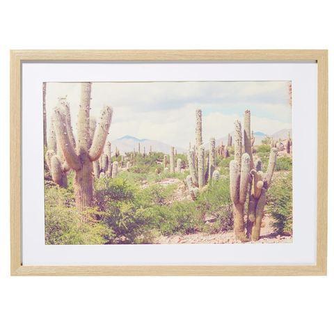 Kmart Desert Print Frame