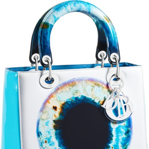 Dior's Amazing New Handbag Collab Belongs in a Museum