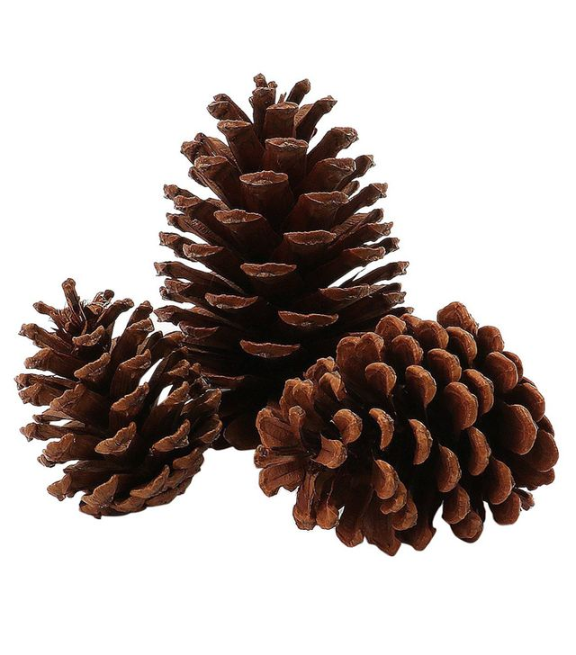 Wondershop 15ct Holiday Accessory Scented Pinecones