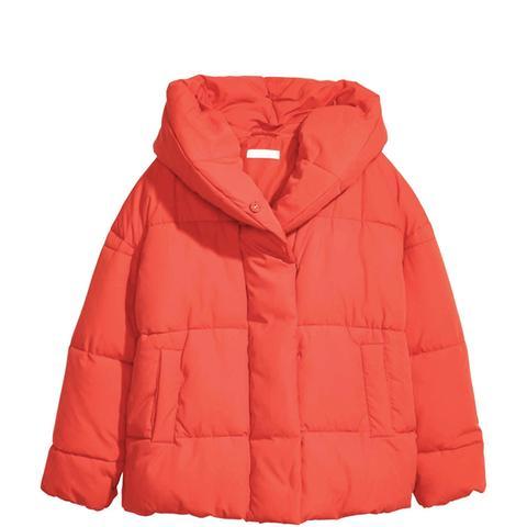 Padded Jacket With a Hood