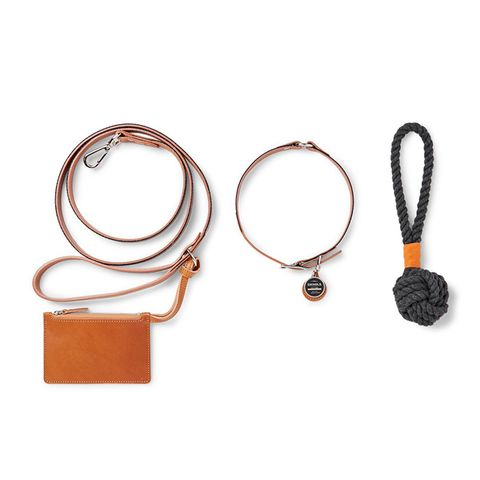 Grosgrain-Trimmed Leather Leash and Toy Set
