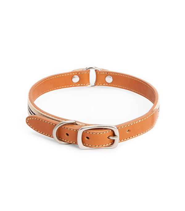 Shinola Nylon & Leather Dog Collar