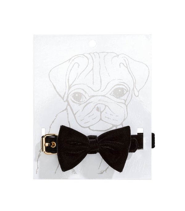 H&M Dog Collar with Bow Tie