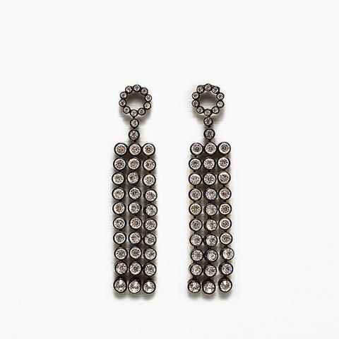 Long Shiny Earrings