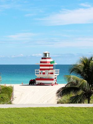 From Palm Beach to Miami, Here are the Coolest Places to Visit in Florida