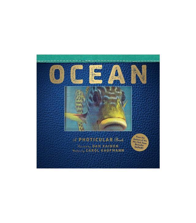 Ocean by Dan Kainen