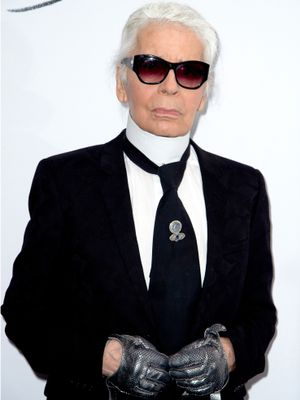 Karl Lagerfeld Is About to Expand His Résumé