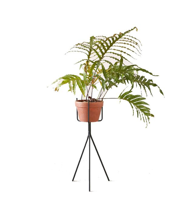 Urban Outfitters Tripod Plant Stand