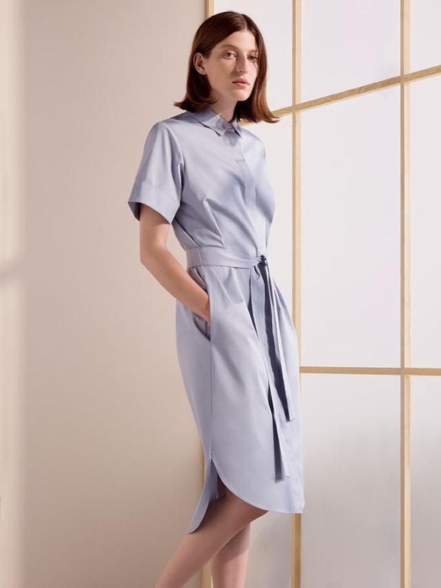 COS Belted Shirt Dress($115)