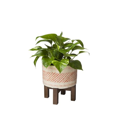 Earthenware Wood Base Planter