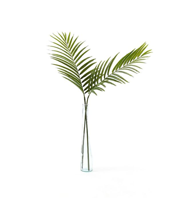 Traditional Décor Ideas — Palm Leaf Branch