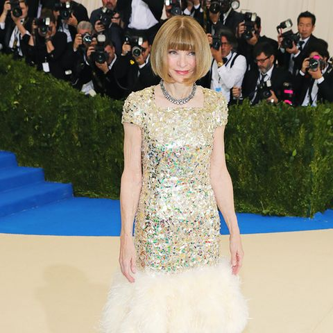 Met Gala 2017 red carpet: Anna Wintour
