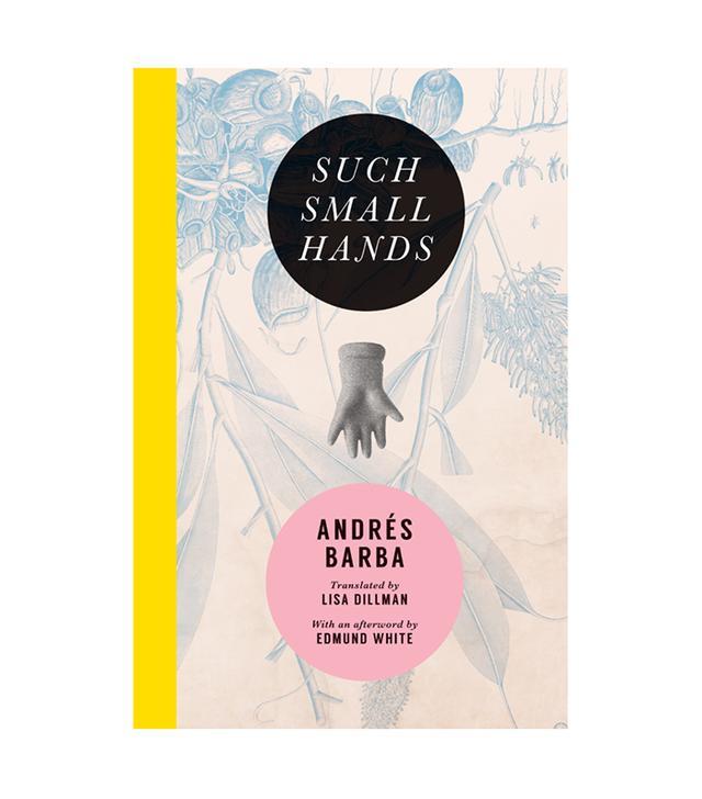 Andrés Barba Such Small Hands