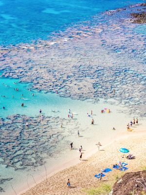 The Underground Spots in Hawaii Every Traveler Needs to Know Now