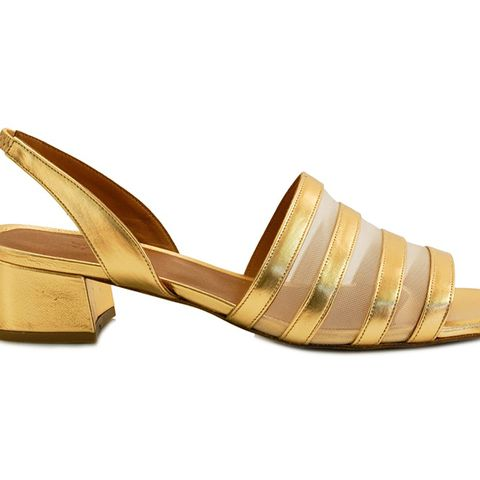 Colleen in Gold