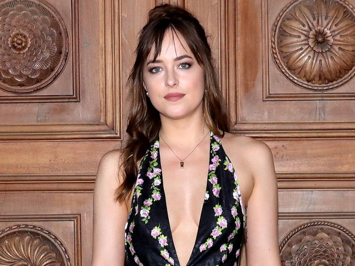 Have You Met Dakota Johnson's Sisters Yet?