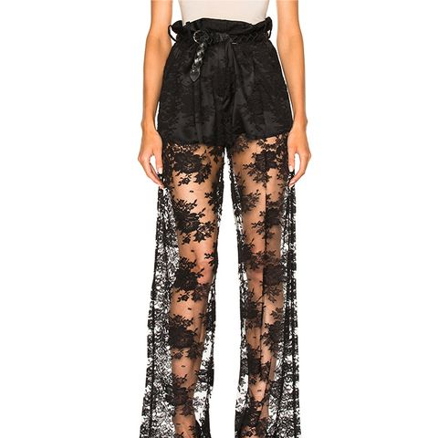 Short Lined Lace Trouser Pant