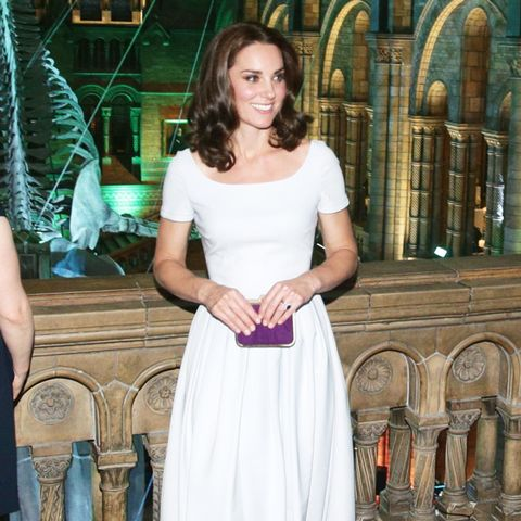 Kate Middleton National History Museum outfit