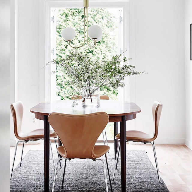 Calling It: These 3 Chic Houseplants Will Be All Over Your Instagram Feed