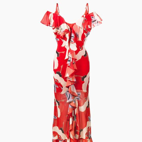 Jolene Bird Printed Slip Gown With Ruffles