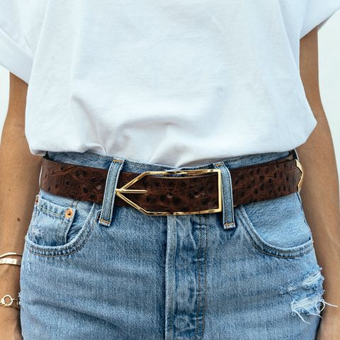 Cocoa Ostrich Brook Belt