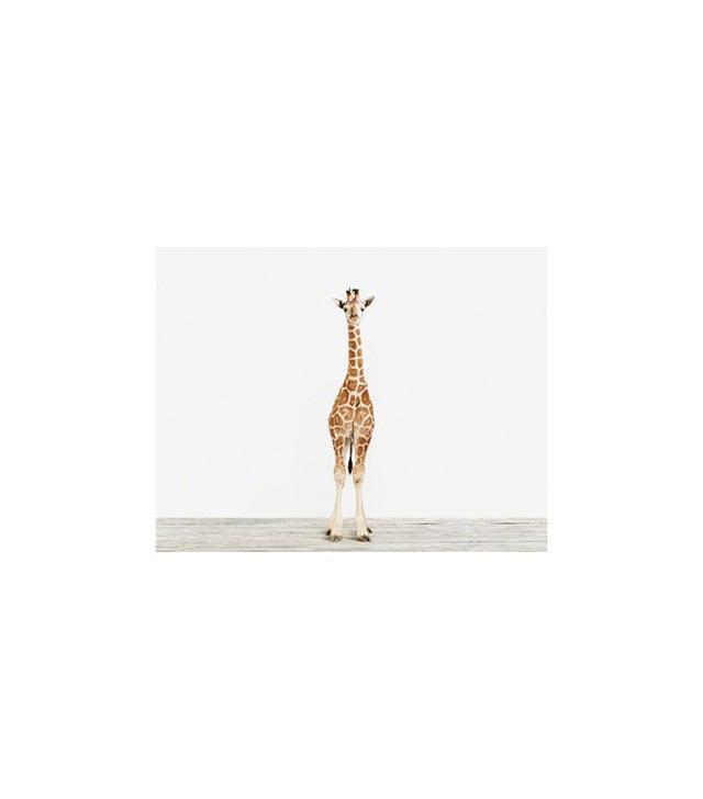 The Animal Print Shop Baby Giraffe No.3