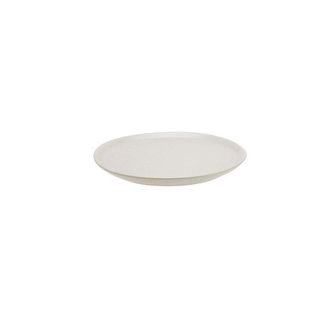 Kmart Irregular Dinner Plate