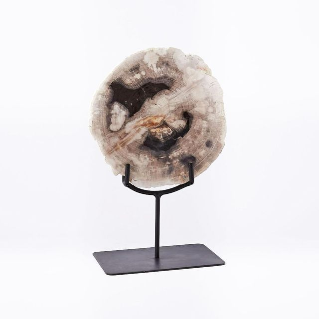 West Elm Petrified Wood Object on Stand
