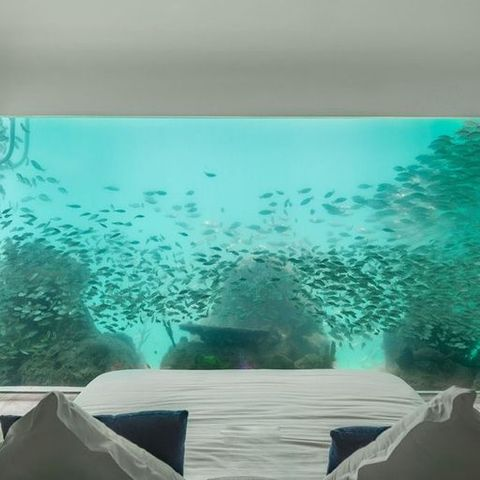 Yes, You Should Go to Dubai and Sleep in an Underwater Villa