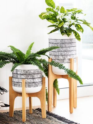 So, EziBuy Just Made Wooden Indoor Planters Affordable