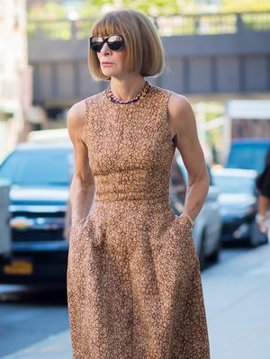 "Anna Wintour: ""I Consider Myself a Groupie"" for This Celeb"