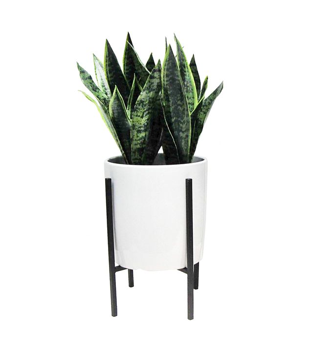Threshold Artificial Plant in Stand