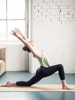 School of Yoga: How to Master Chaturanga