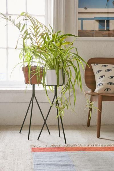 Tripod Plant Stand - Black L at Urban Outfitters