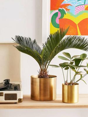 We've Found 3 Ways to Style This Versatile $3 IKEA Buy