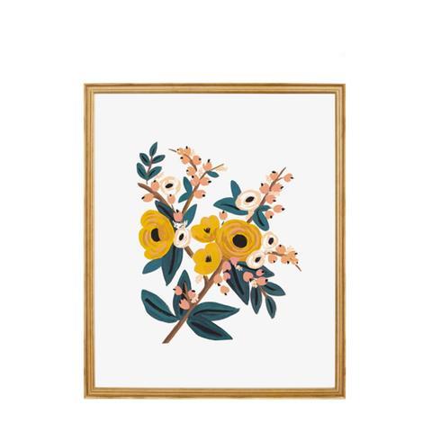 Marigold Botanical