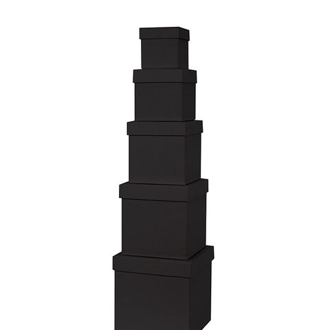 Black Cub Gift Box