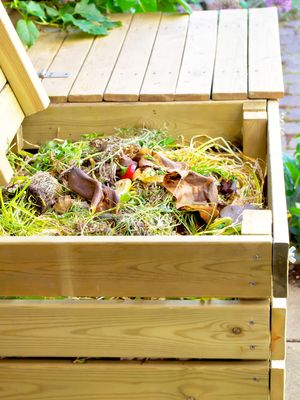 How to Compost in 4 Simple Steps