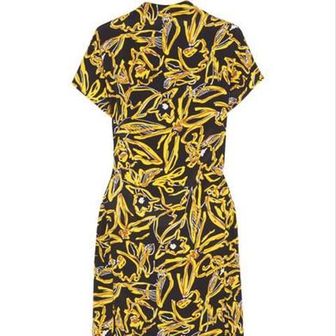 Printed Silk Crepe de Chine Dress