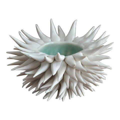Micro Urchin Bowl