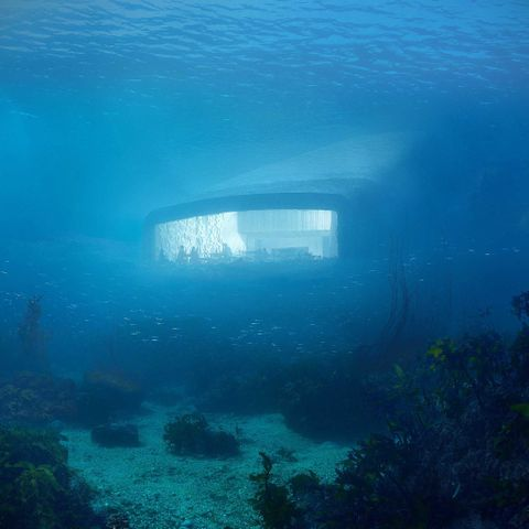 Would You Dine at Europe's First Underwater Restaurant? See the Inside