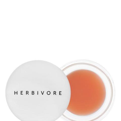 Herbivore Botanicals Coco Rose Lip Polish