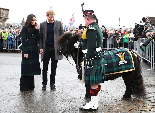 meghan markle, scotland, pony