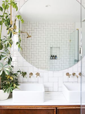 "These ""Bathroom Plants"" Will Make Every Shower Feel Like a Mini Tropical Getaway"