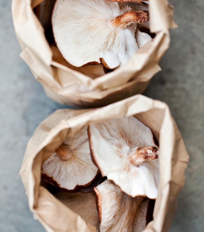 Prebiotic Foods Shiitake Mushrooms